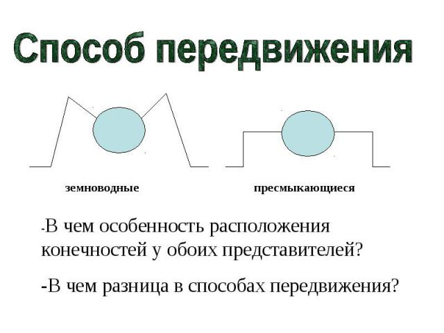 Способ передвижения-В чем особенность расположения конечностей у обоих представителей?-В чем разница в способах передвижения?