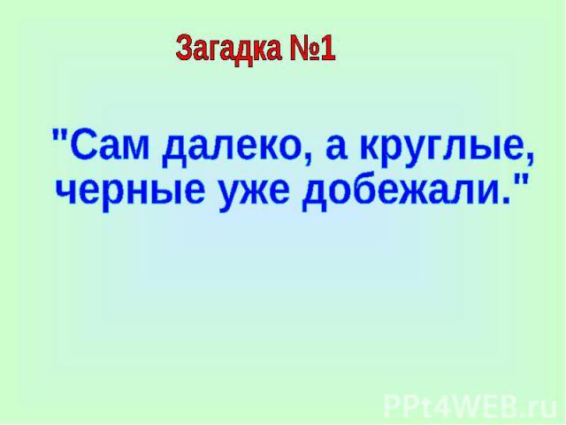 Загадка №1