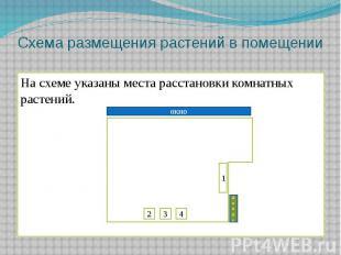 Схема размещения растений в помещенииНа схеме указаны места расстановки комнатны