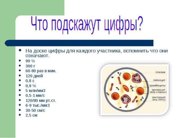 Презентация На Тему Кровь 8 Класс Биология