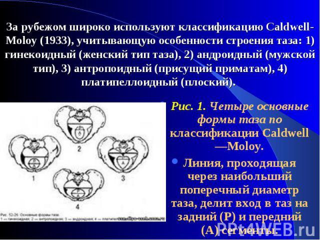 Puc. 1. Четыре основные формы таза по классификации Caldwell—Moloy. Puc. 1. Четыре основные формы таза по классификации Caldwell—Moloy. Линия, проходящая через наибольший поперечный диаметр таза, делит вход в таз на задний (Р) и передний (А) сегменты.