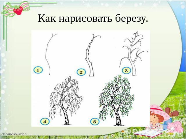 Рисованный береза для детей