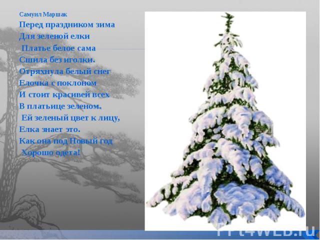 Фиалка зима улыбается фото и описание сорта фото