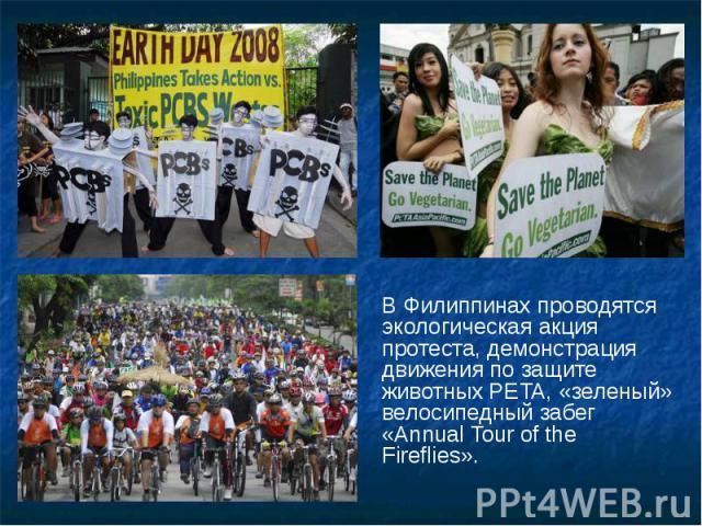 В Филиппинах проводятся экологическая акция протеста, демонстрация движения позащите животных PETA, «зеленый» велосипедный забег «Annual Tour ofthe Fireflies». В Филиппинах проводятся экологическая акция протеста, демонстрация движения п…