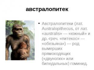 Презентация по биологии на тему эволюция человека (11 класс)
