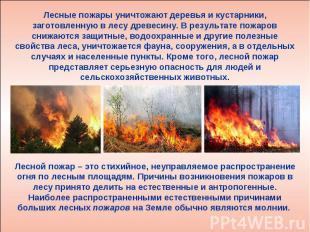 В самом деле этот пожар как бы разделил