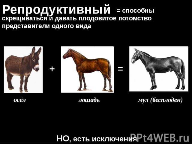 Презентация на тему аспекты вида