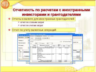 Отчеты в валюте для иностранных грантодателей Отчеты в валюте для иностранных гр