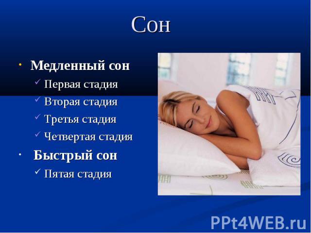 Сон Быстрый