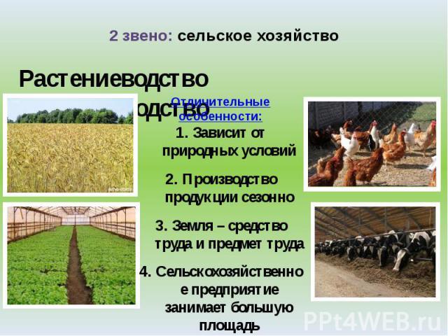 схема на тему животноводство