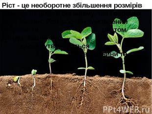 Ріст - це необоротне збільшення розмірів та маси як цілого організму, так і окре