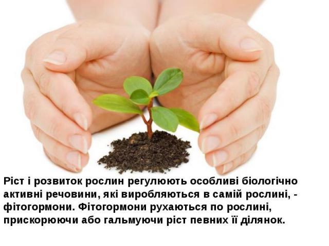 Ріст і розвиток рослин регулюють особливі біологічно активні речовини, які виробляються в самій рослині, - фітогормони. Фітогормони рухаються по рослині, прискорюючи або гальмуючи ріст певних її ділянок.