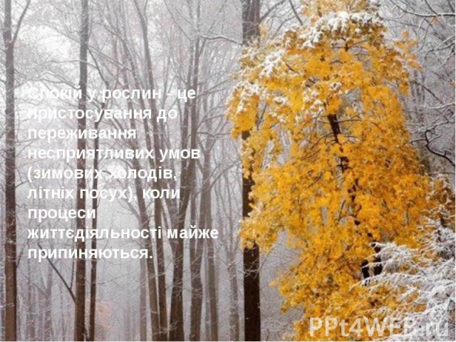 Спокій у рослин - це пристосування до переживання несприятливих умов (зимових холодів, літніх посух), коли процеси життєдіяльності майже припиняються.