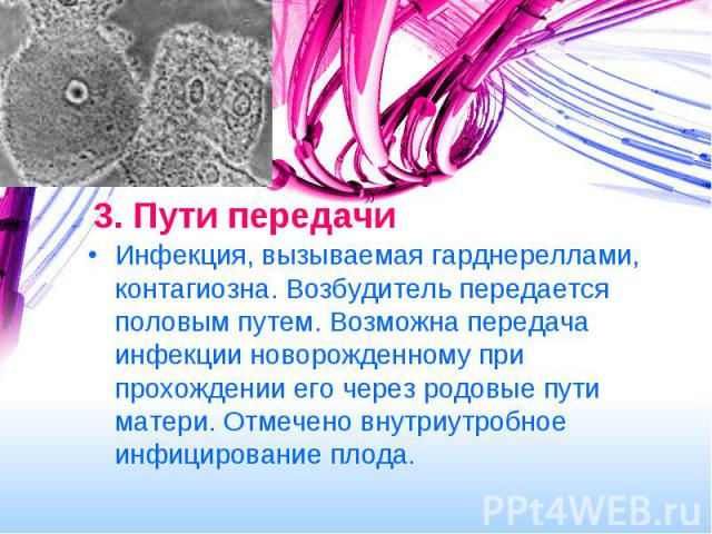 peredaetsya-li-pri-oralnom-sekse-ureaplazma-gardnerella
