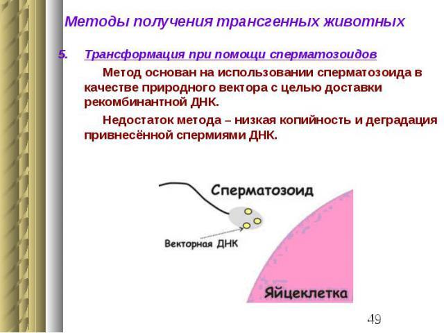 spermatozoidi-s-fragmentatsiey-dnk
