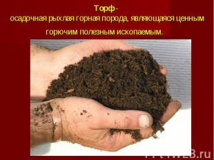 Торф- осадочная рыхлая горная порода, являющаяся ценным горючим полезным и