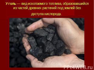 Уголь— вид ископаемого топлива, образовавшийся из частей древних растений