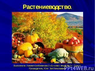 Растениеводство.Выполнила: Амалия Безбалинова 3 «Б» класс лицей № 2 г. СургутРук