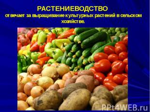 РАСТЕНИЕВОДСТВО отвечает за выращивание культурных растений в сельском хозяйстве