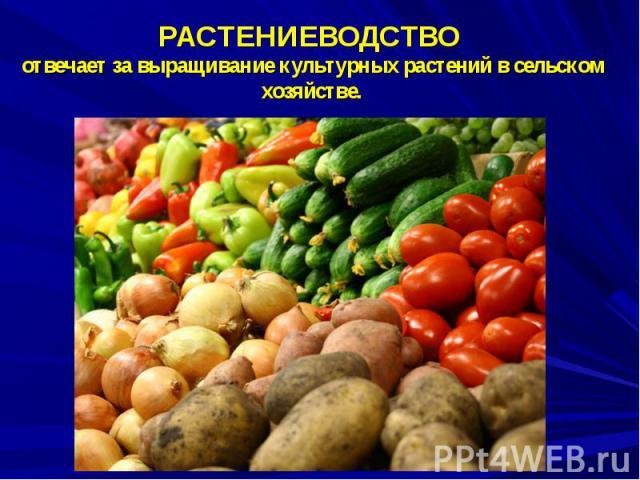 РАСТЕНИЕВОДСТВО отвечает за выращивание культурных растений в сельском хозяйстве.