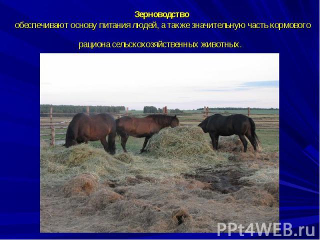 Зерноводство обеспечивают основу питания людей, а также значительную часть кормового рациона сельскохозяйственных животных.