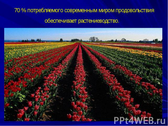 70 % потребляемого современным миром продовольствия обеспечивает растениеводство.