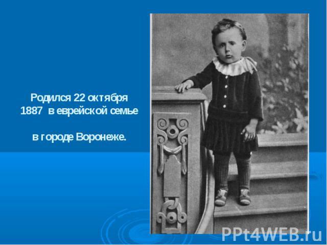 Родился 22 октября 1887 в еврейской семье в городе Воронеже.