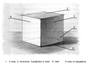 1.тень 2. полутень 3.рефлнкс в тени 4. свет 5.тень от предмета 1.тень 2. полутен