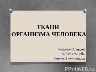 ТКАНИ ОРГАНИЗМА ЧЕЛОВЕКА Коломин Алексей МАОУ «Лицей» Ученик 8 «А» класса