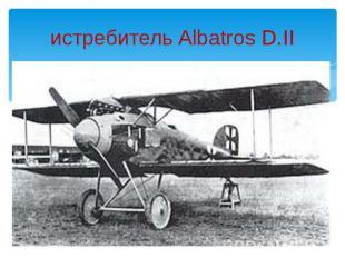 истребитель Albatros D.II