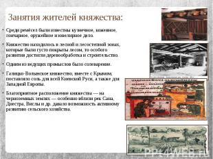 Занятия жителей княжества:Среди ремёсел были известны кузнечное, кожевное, гонча