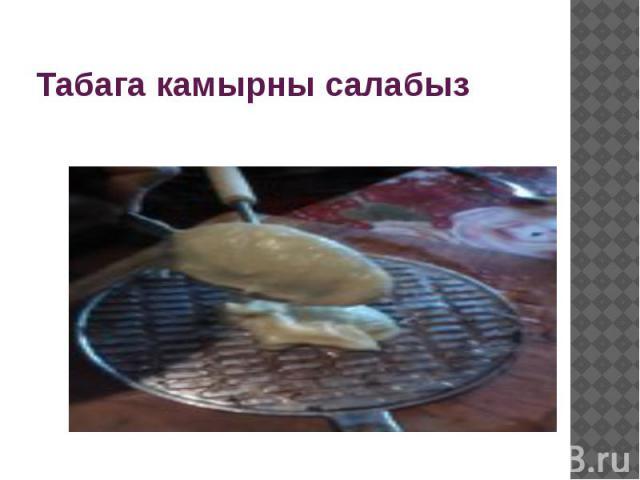 Табага камырны салабыз