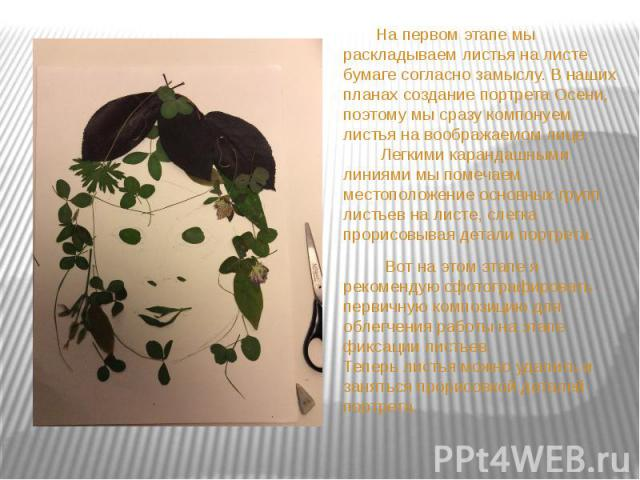 На первом этапе мы раскладываем листья на листе бумаге согласно замыслу. В наших планах создание портрета Осени, поэтому мы сразу компонуем листья на воображаемом лице. Легкими карандашными линиями мы помечаем местоположение основных групп листьев н…