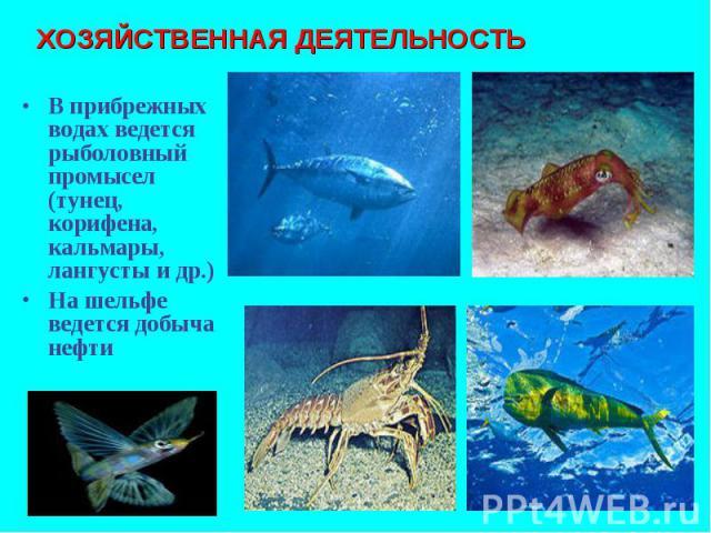 В прибрежных водах ведется рыболовный промысел (тунец, корифена, кальмары, лангусты и др.) В прибрежных водах ведется рыболовный промысел (тунец, корифена, кальмары, лангусты и др.) На шельфе ведется добыча нефти