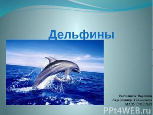 ДельфиныВыполняла: Воронина Лада ученица 3 «А» класса МАОУ СОШ №23