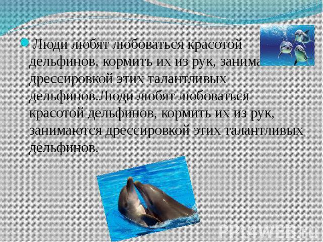 Люди любят любоваться красотой дельфинов, кормить их из рук, занимаются дрессировкой этих талантливых дельфинов.Люди любят любоваться красотой дельфинов, кормить их из рук, занимаются дрессировкой этих талантливых дельфинов. Люди любят любоваться кр…