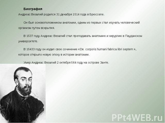 Биография Андреас Везалий родился 31 декабря 1514 года в Брюсселе. Биография Андреас Везалий родился 31 декабря 1514 года в Брюсселе. Он был основоположником анатомии, одним из первых стал изучать человеческий организм путем вскрытия. В 1537 году Ан…