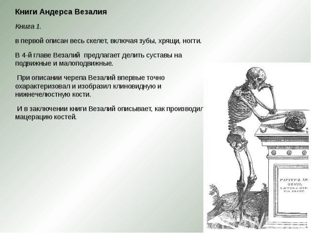 Книги Андерса Везалия Книги Андерса Везалия Книга 1. в первой описан весь скелет, включая зубы, хрящи, ногти. В 4-й главе Везалий предлагает делить суставы на подвижные и малоподвижные. При описании черепа Везалий впервые точно охарактеризовал…