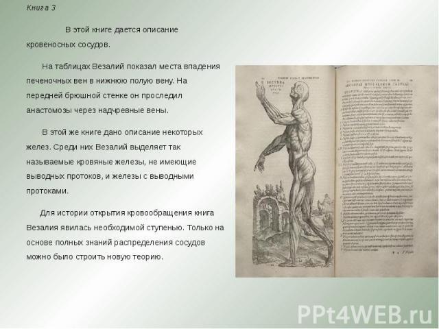 Книга 3 Книга 3 В этой книге дается описание кровеносных сосудов. На таблицах Везалий показал места впадения печеночных вен в нижнюю полую вену. На передней брюшной стенке он проследил анастомозы через надчревные вены. В этой же книге да…