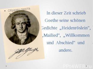 """In dieser Zeit schrieb Goethe seine schönen Gedichte """"Heidenröslein"""", """"Mail"""