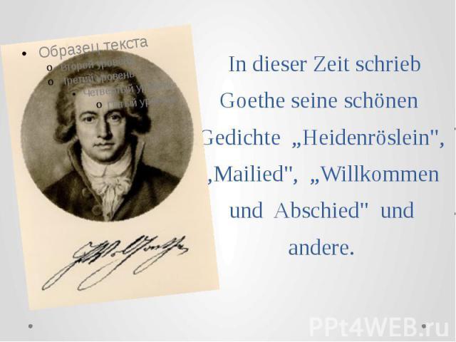 """In dieser Zeit schrieb Goethe seine schönen Gedichte """"Heidenröslein"""", """"Mailied"""", """"Willkommen und Abschied"""" und andere."""
