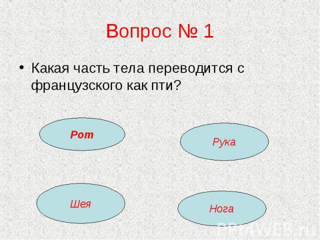 Вопрос № 1 Какая часть тела переводится с французского как пти?
