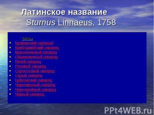 Латинское название Sturnus Linnaeus, 1758 Виды Браминский скворец) Камбоджийский