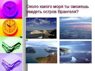 Около какого моря ты сможешь увидеть остров Врангеля?