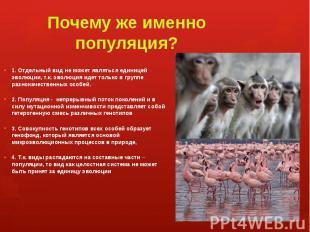 Почему же именно популяция? 1. Отдельный вид не может являться единицей эволюции