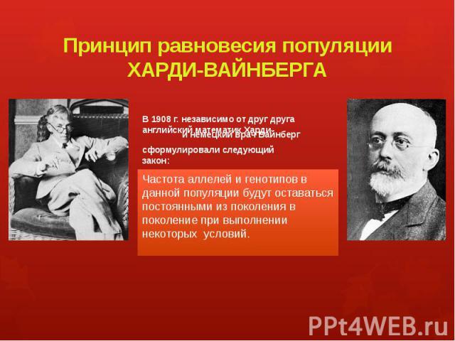 Принцип равновесия популяции ХАРДИ-ВАЙНБЕРГА В 1908 г. независимо от друг друга английский математик Харди