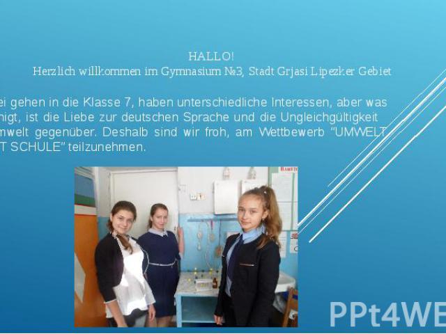 HALLO! Herzlich willkommen im Gymnasium №3, Stadt Grjasi Lipezker Gebiet Wir drei gehen in die Klasse 7, haben unterschiedliche Interessen, aber was uns einigt, ist die Liebe zur deutschen Sprache und die Ungleichgültigkeit der Umwelt gegenüber. Des…