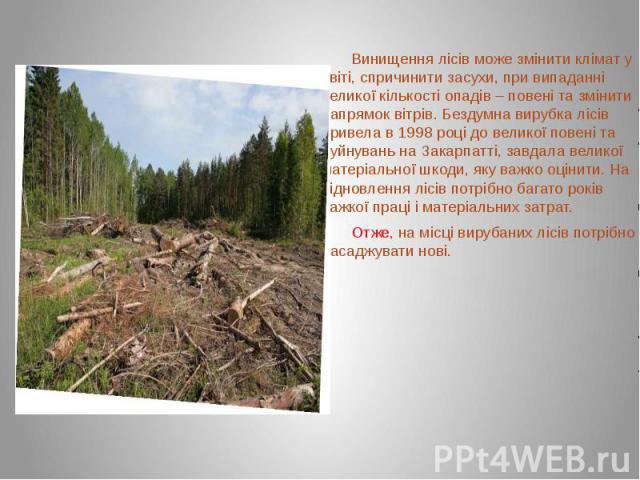 Винищення лісів може змінити клімат у світі, спричинити засухи, при випаданні великої кількості опадів – повені та змінити напрямок вітрів. Бездумна вирубка лісів привела в 1998 році до великої повені та руйнувань на Закарпатті, завдала великої мате…