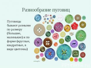Разнообразие пуговиц Пуговицы бывают разными по размеру (большие, маленькие) и п