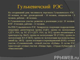 На сегодняшний день численность персонала Гулькевичского РЭС 69 человек, из них: